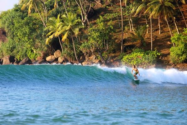 Surf in Mirissa
