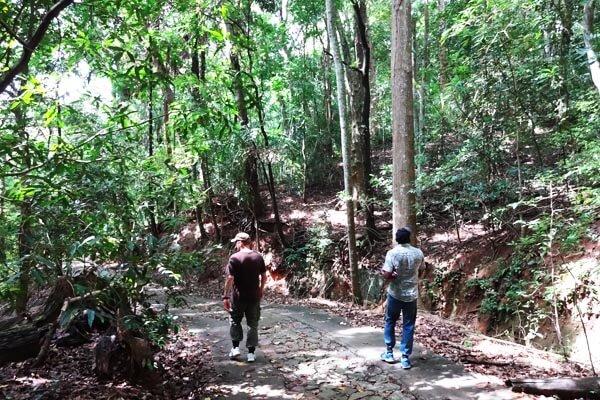Udawattakele Sanctuary